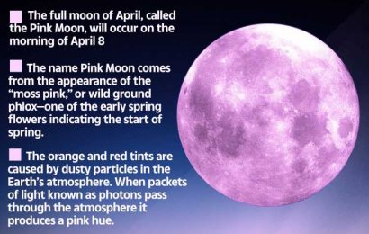 Rare 'Super Pink Moon' will fill skies next week – how to spot it