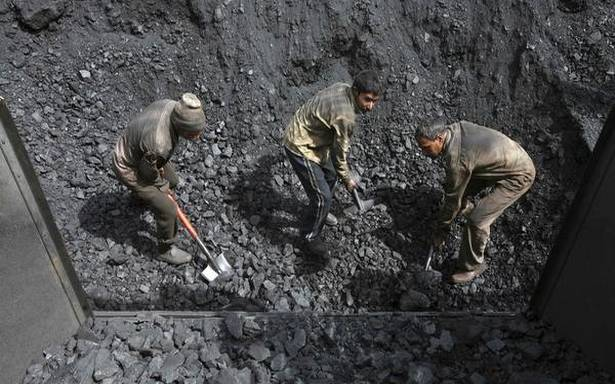 Thermal coal imports for 2019 rise 12.6%
