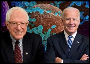Biden And Sanders Cancel Rallies Amidst Coronavirus Concerns