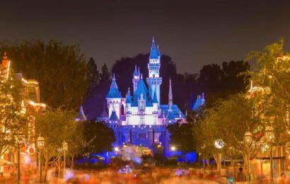 Disneyland Could Start Temperature Checks When Parks Reopen, Bob Iger Says