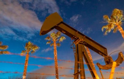 Historic oil production cuts 'will not halt slump in demand'