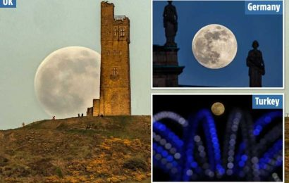 Brilliant 'flower' full moon seen in spectacular pictures as 2020's last supermoon lights up the sky