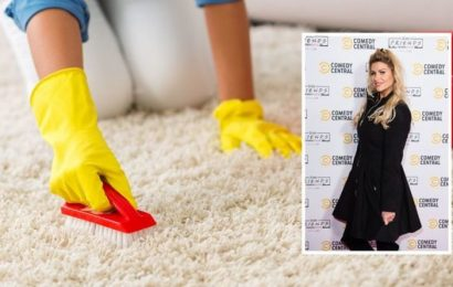 Mrs Hinch fan reveals best carpet cleaning method to remove stains with cheap product
