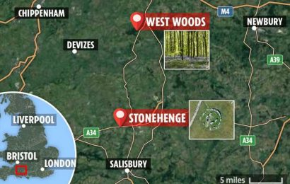 Mystery of where giant Stonehenge rocks came from SOLVED as scientists pinpoint exact Wiltshire wood