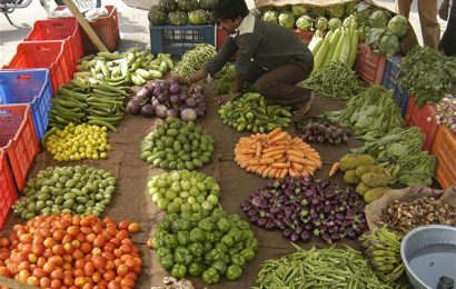 Vegetable prices plunge by up to 44% in the past three weeks