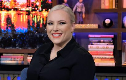 Meghan McCain and others mock AP for claiming 'experts' can't explain surge in violence: 'I have a theory…'