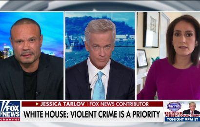 Bongino rips coverage of Portland violence: 'The misinformation is stunning'