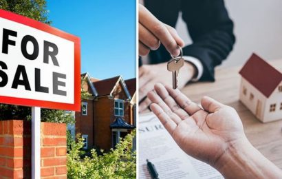 House prices set to steadily surge until autumn in 'increasingly buoyant market'