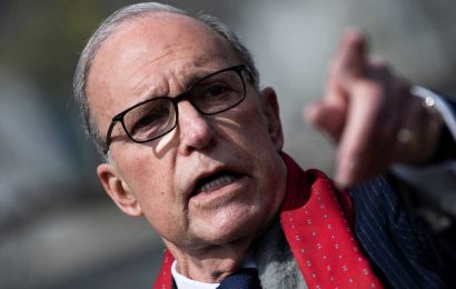 WH economic adviser expects US unemployment rate to return to single digits