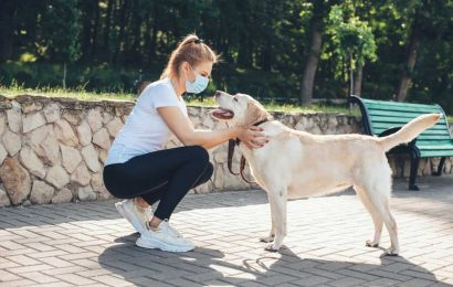 Many Americans have adopted pets amid Covid-19. But beware the costs