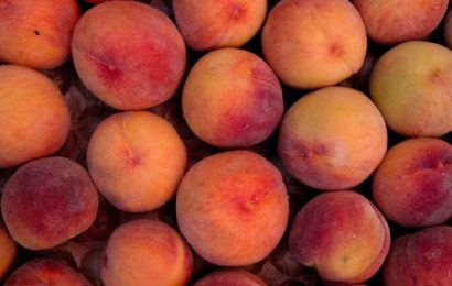Target and Aldi recall bagged peaches linked to 68 salmonella cases across 9 US states
