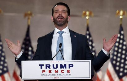 Donald Trump Jr. privately thinks Trump will lose in November, and fears prosecutions will follow, according to a new report which he has strongly denied