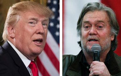 Trump reacts to 'very sad' Bannon arrest, says he 'didn't like' private border wall project