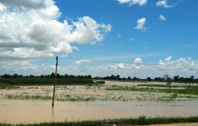 Floods Washed Away More Than 25% of Nigeria's Rice Harvest