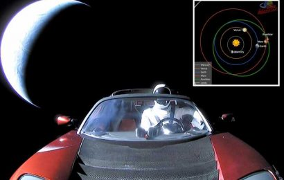 Elon Musk's Tesla Roadster has just flown by Mars after 37million mile journey – and played Space Oddity 260,000 times