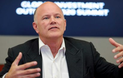 Famed investor Mike Novogratz says 'liquidity tsunami' from stimulus will drive investors to buy any dips from Biden's tax plan