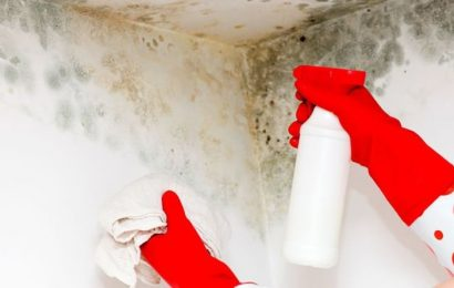 Cleaning: Mrs Hinch fans share £1 product from B&M to get rid of black mould