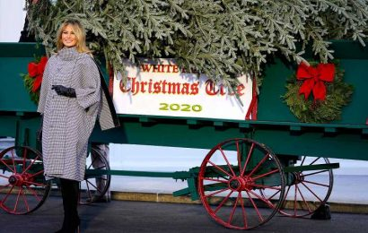Melania Trump Greets White House Christmas Tree for the Last Time After Husband's Election Loss