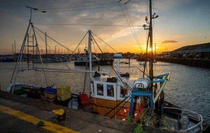 Brexit Negotiators Move Close to Breaking Key Impasse Over Fish
