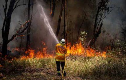 $41 Billion Pension Fund Settles Australian Climate Change Lawsuit