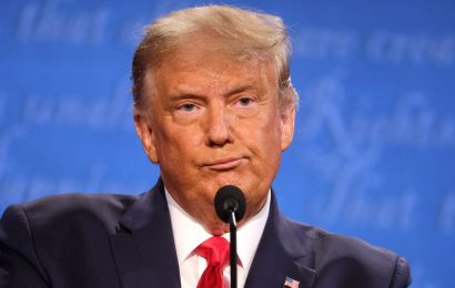 Trump reportedly told an ally he knows he lost the 2020 election but wants revenge on Democrats for disputing his 2016 win