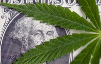 Aurora Cannabis, Canopy Growth Earnings Are Disconnected From Current Share Price