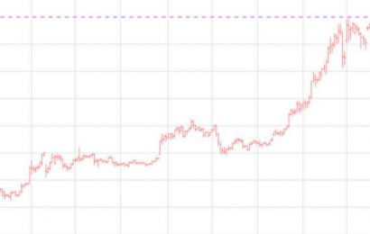 Bitcoin Surpasses $20,000for First Time Amid Dizzying Rally