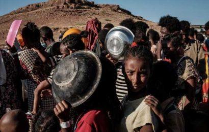 EU Pledges an Extra $29 Million to Help War-Torn Ethiopia Region