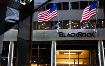 BlackRock Gains Clout in Washington as Biden Builds His Team