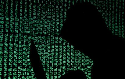 Security experts are 'freaking out' about how foreign hackers carried out the 'most pristine espionage effort' in modern history right under the US's nose