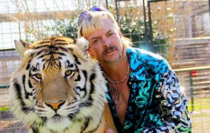 House passes 'Tiger King' bill to outlaw private ownership of big cats