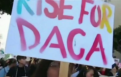 Federal court restores DACA program, orders DHS to accept new applicants