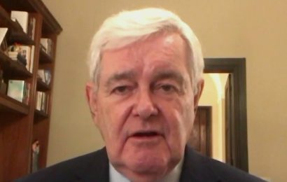 Newt Gingrich & Jackie Cushman: Ensure election integrity in Georgia runoffs