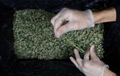 Illinois Expunges Nearly 500,000 Cannabis Arrest Records