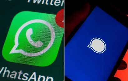 WhatsApp users flock to rival Signal after Facebook-owned app introduces 'draconian' new privacy rules