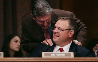 Swing Voters Will Rule in aSplit Senate
