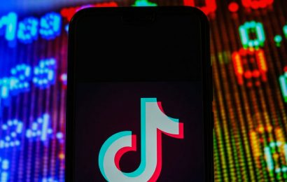 EXCLUSIVE: TikTok was told the 'strictly confidential' identity of the UK's next ambassador to China, before the appointment was confirmed