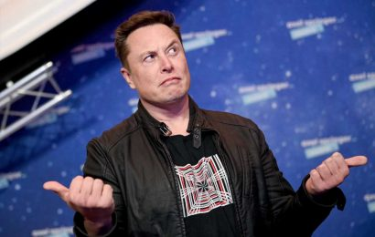 Elon Musk's dogecoin tweets are 'disconcerting' and people will lose money, bitcoin bull says