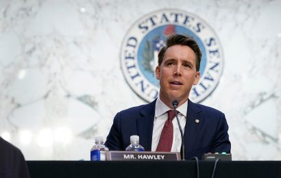 Hawley suggests Biden elevate Trump-era judges, but warns president is 'in thrall to radical left wing'