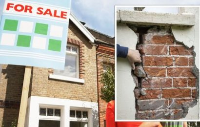 Property warning: 'Big potholes' buyers can face if they don't get an independent survey