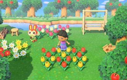 Animal Crossing anniversary: 9 other cozy Nintendo Switch games for you to explore