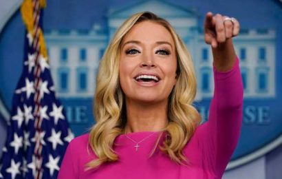 Kayleigh McEnany talks undergoing double mastectomy, potential run for office