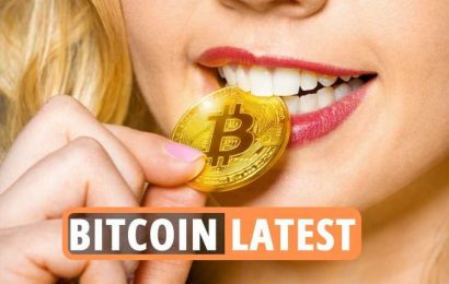 Bitcoin news LIVE – Ethereum price at record high as Safemoon, Dogecoin and Bitcoin plunge in cryptocurrency shock