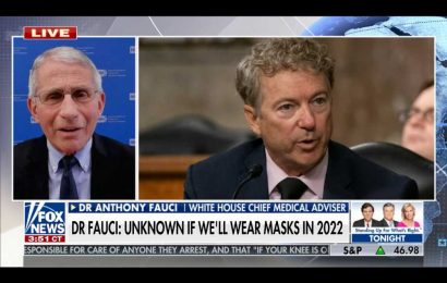 Fauci Slams 'Bizarre' Right-Wing Critics in Fox Interview