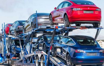 How Long Will Tesla Dominate EV Sales?