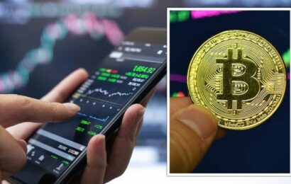 Bitcoin price crash: Digital coin market plummets in wake of Chinese crackdown