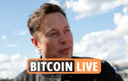 Bitcoin price news latest – Crypto market recovers as Elon Musk reveals BTC 'green mining' plan after HUGE stock crash