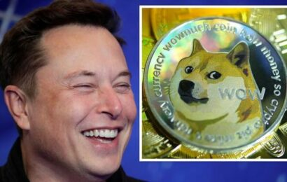 Dogecoin: 'Huge price surge' coming in days as celebs 'jump in with Musk' to rocket value