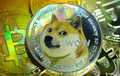Dogecoin crisis: Crypto 'won't last' as Elon Musk deals brutal blow