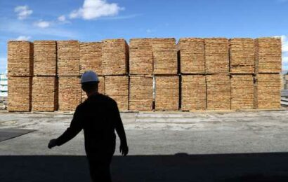 Lumber executive expects volatility, elevated prices to last for 'foreseeable future'